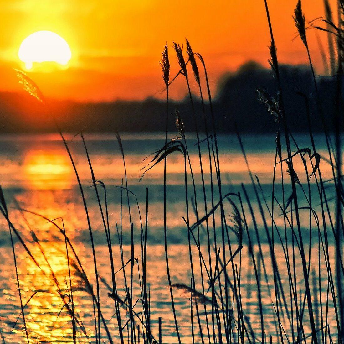 vand solnedgang kvadrat e1612622448804